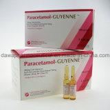 御馳走熱のParacetamolの注入のための準備ができた在庫