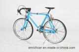 Bicicleta do modelo da estrada do boutique para a exposição