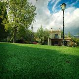 2016 Nuevos barato paisajismo decorativo Césped artificial