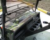 Электрическое багги звероловства. 2 места, багги гольфа, с багги дороги, ATV