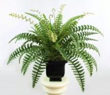 Alta calidad de las plantas artificiales Boston Fern5