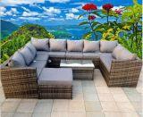 Im Freien Aluminium/Stahlfeld-Patio-Garten-Möbel