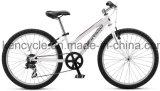 حارّ يبيع جبل [بيك/متب] دراجة/[موونتين بيك] [بيسكلس/متب] دراجات/[أتب] [بيك/كتب] دراجة