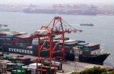 쿠에이트 지부티 Umm-Qasr Khorramshahr off-Price에 중국 Container Shipping