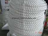 3 طاق [بّ] حبل/بوليبروبيلين حبل