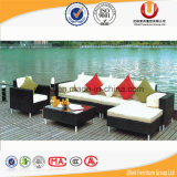 Nuovo sofà di vimini esterno a buon mercato dell'interno superiore del rattan della mobilia del modello (UL-3026)
