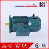 포장 기계장치를 위한 660V 50Hz 감응작용 AC 제동 모터