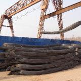 Barra d'acciaio deforme costolata laminata a caldo per materiale da costruzione (tondo per cemento armato 10-25mm)