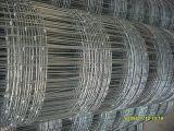 Rete fissa rivestita della rete metallica dell'acciaio/Iron/PVC per erba (ZSTEEL-003)