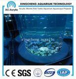 De aangepaste AcrylTank van Vissen Transaprent van Project Oceanarium