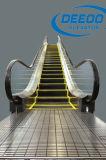 Nueva escalera móvil de la alameda de compras del pasajero