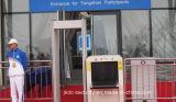 Alarme inteligente do equipamento da segurança do passageiro do projeto modular do Ce em injetores e em facas proibidas