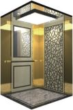 El espejo de la elevación del elevador del pasajero grabó al agua fuerte Sr. y Mrl Aksen Hl-X-018