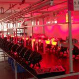 Luz caliente barata de la IGUALDAD de la venta 54X3w LED (ICON-A031B)