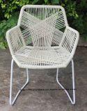 [موردن] خارجيّ داخليّة وقت فراغ فولاذ [رتّن] كرسي ذو ذراعين [تروبيكليا] كرسي تثبيت