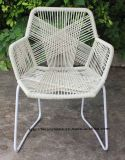 Mordenの屋外の屋内余暇の鋼鉄藤の肘掛け椅子のTropicaliaの椅子