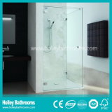 New Design Sliding Shower Screen com vidro temperado fosco (SD300N)