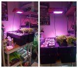 무용담 840W 온실 야채 LED는 빛을 증가한다