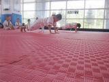 Водоустойчивые циновки гимнастики пола Taekwondo пены Kamiqi ЕВА для тренировки
