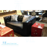 ジェーンのヨーロッパ式の居間の革ソファーはセットした(HW-6509S)