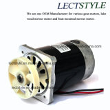 motor del cortacéspedes de 350W 24V 180rpm Dclake