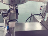Macchina imballatrice di cardatura della bolla farmaceutica della bolla di serie di Dpp