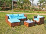 Rattan esterno del patio di vendita calda/mobilia di vimini del giardino del sofà