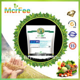 Mcrfee NPK + Te Fertilizante soluble en agua de China