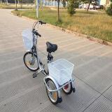 Chinesische preiswerte Preis-Erwachsen-elektrisches Ladung-Dreirad Rseb-704