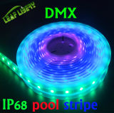 Individualmente Addressable los 24/30/60/LED/M, IP68 Waterproof DMX LED Stripe