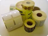 Máquina de impressão de papel de Flexo do rolo da etiqueta com certificação do Ce (ZBRY-650)
