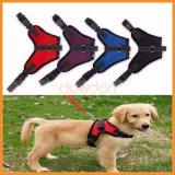 Sattel-haltbare Ineinander greifen-Gewebe-Sport-Haustier-Hundeverdrahtung für Hunde