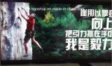 軽いBox Material、PVC Backlit Flex Banner (500dx1000d 440g、500g、610g)