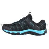 Esportes novos dos calçados da forma que funcionam a senhora Sapata