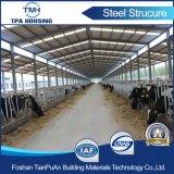 La struttura d'acciaio di disegno dell'indicatore luminoso professionale di basso costo fa in Cina