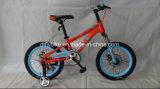 20inch scherzt Fahrrad, Kind-Fahrrad,