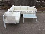 Materiale dell'acciaio inossidabile ed insieme moderno del sofà del metallo di apparenza