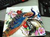 Tarjeta para hacer publicidad, decoración, construcción de la espuma del PVC de los colores