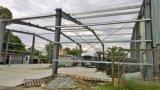 2017 저가를 가진 최신 판매 빛 강철 구조물 Workshop& 창고 건물