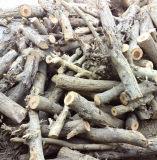 Lo scaldacqua del vapore di piccola capacità, legno ha infornato la griglia fissa della caldaia