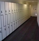 금속 가구 저장 Z 타입-2 문 로커