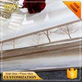 Surtidor 250&times de China; 750 cuarto de baño y azulejo de cerámica de la pared del azulejo de la pared de la cocina