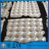 공장 직매 온갖 기계를 만드는 주조된 제지용 펄프 30 계란 쟁반