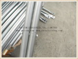 Cinta transversal de aço do andaime da construção do molde