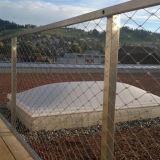 ステンレス鋼ロープの網の緑の壁システム(ステンレス鋼ワイヤーロープの網か網)