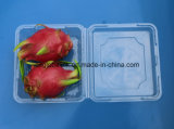 La casella a gettare di imballaggio di plastica della bolla della copertura superiore per l'OEM dell'ortaggio da frutto accetta