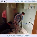 Il vetro della decorazione nella doccia con vetro ed acido intagliati ha inciso il vetro con Ce & ccc
