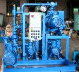 Sistema de bomba de vacío del anillo del Raíz-Agua