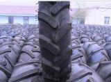 덤프 트럭 타이어 OTR 타이어