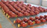 Nsrr Biogas-Gebläse (Luftgebläse)/Vakuumpumpe